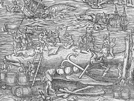 whale-fishing-from-cosmographie-universelle-by-andre-de-thevet-1575
