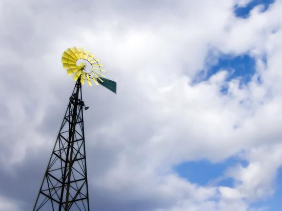 white-petteway-blades-of-a-windmill-are-painted-yellow-to-mimic-a-flower