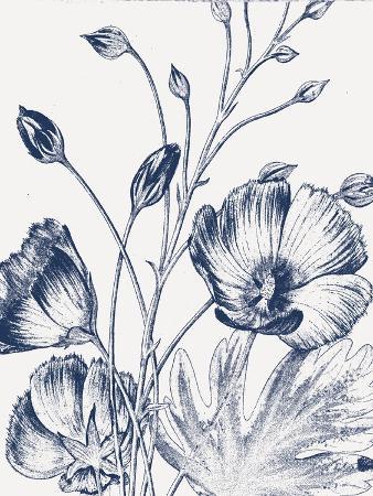 wild-apple-portfolio-botanical-beauty-chalk-ix-blue-on-white-crop