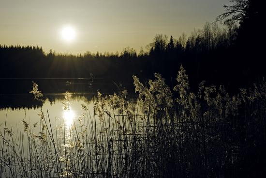 wild-wonders-of-europe-twilight-glimmer
