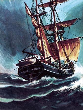 wilf-hardy-the-seafarer