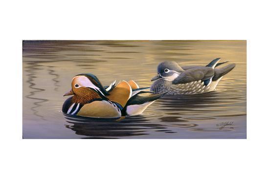 wilhelm-goebel-mandarin-ducks