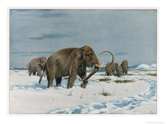 wilhelm-kuhnert-mammoth-herd-during-the-ice-age