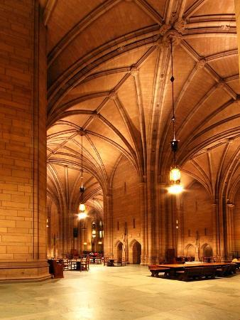 will-babin-university-of-pittsburgh-architecture-in-the-cathedral-of-learning