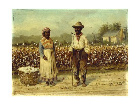william-aiken-walker-picked-cotton