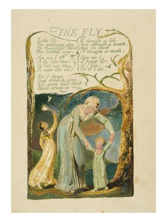 william-blake-the-fly-plate-47-from-songs-of-experience-1794