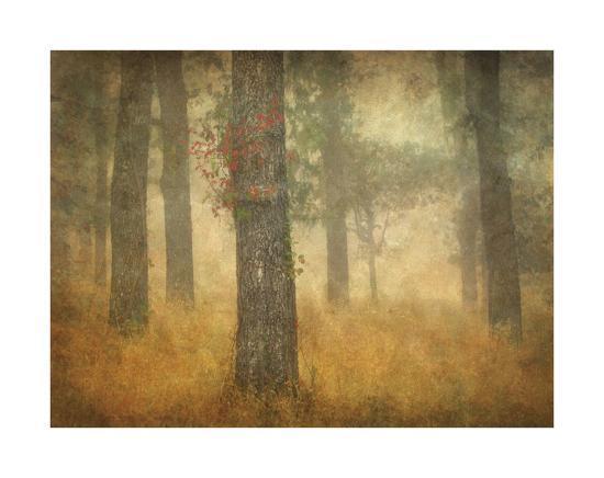 william-guion-oak-grove-in-fog-study-26