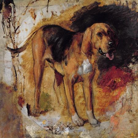 william-holman-hunt-a-study-of-a-bloodhound-1848