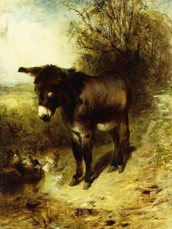 william-huggins-a-brown-study-1853