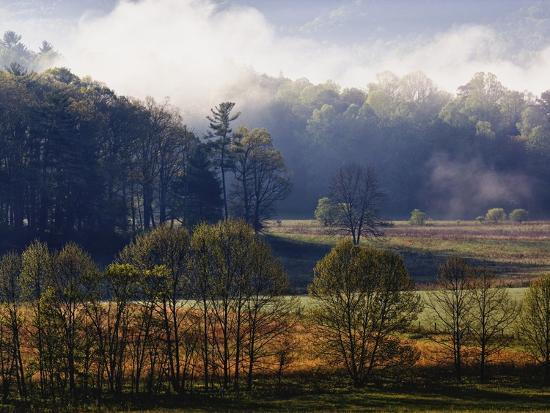 fog lifting from cades cove photographic print by william manning at. Black Bedroom Furniture Sets. Home Design Ideas