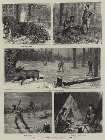 william-ralston-moose-hunting-in-nova-scotia