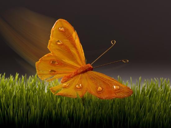 william-scott-surreal-butterfly