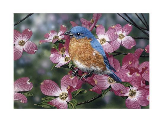 william-vanderdasson-bluebird-pink-dogwood