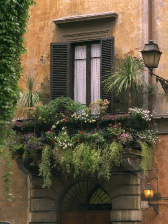 window-display-near-piazza-navona-rome-lazio-italy-europe