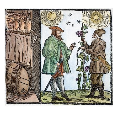 wine-merchant-1582