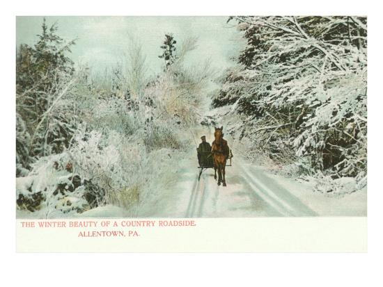 winter-horse-and-sleigh-allentown-pennsylvania