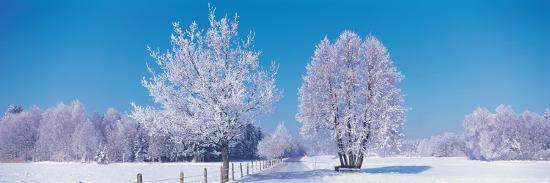 winter-scenic-germany
