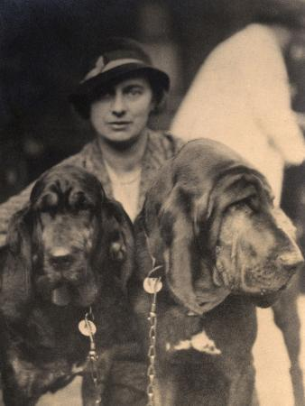 woman-with-two-pedigree-bloodhounds