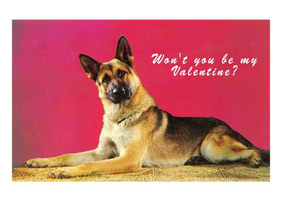wont-you-be-my-valentine-quizzical-german-shepherd