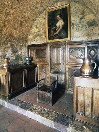 wood-panelling-castle-of-turenne-meyssac-limousin-france