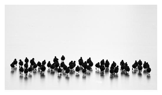 yordan-vasilev-untitled