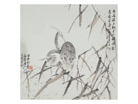 yuan-mu-look-for-a-fish