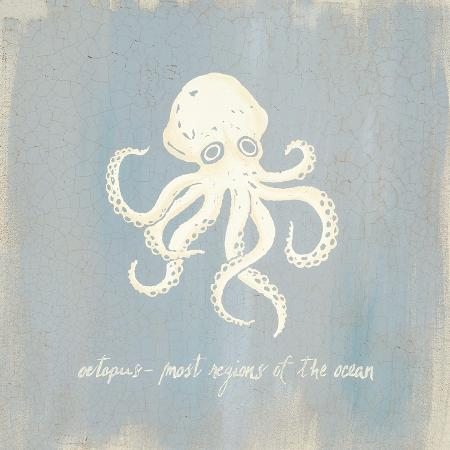 z-studio-imperial-octopus