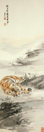 zhang-shanzi-tiger