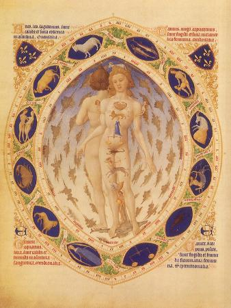 zodiac-man-and-signs-1416