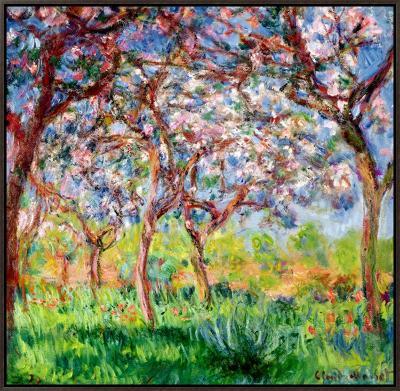 Printemps a Giverny, 1903-Claude Monet-Framed Canvas Print