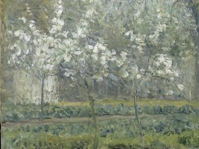 https://imgc.artprintimages.com/img/print/printemps-pruniers-en-fleurs-dit-potager-arbres-en-fleurs-printemps-pontoise_u-l-pbigos0.jpg?p=0