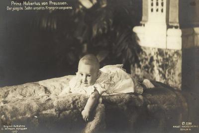 Prinz Hubertus Von Preußen Auf Einem Fell Liegend--Giclee Print