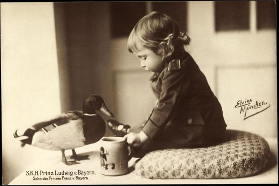 Prinz Ludwig Von Bayern, Sohn Des Prinzen Franz Von Bayern, Stockente--Giclee Print