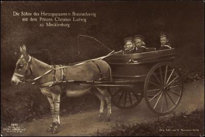 Prinzen Von Braunschweig, Prinz Christian L., Esel--Giclee Print