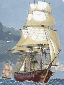 Clipper, 19th Century by Prisma Archivo