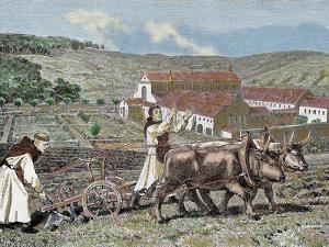 Monks Plowing the Land with Oxen, Germany (1872) by Prisma Archivo