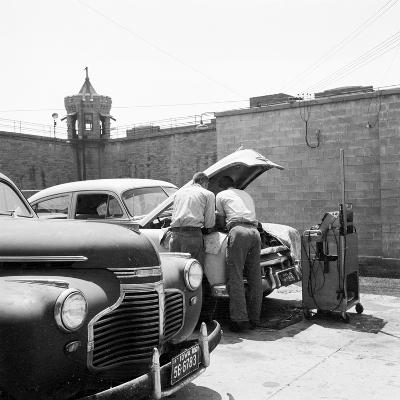 Prison Garage-Three Lions-Photographic Print