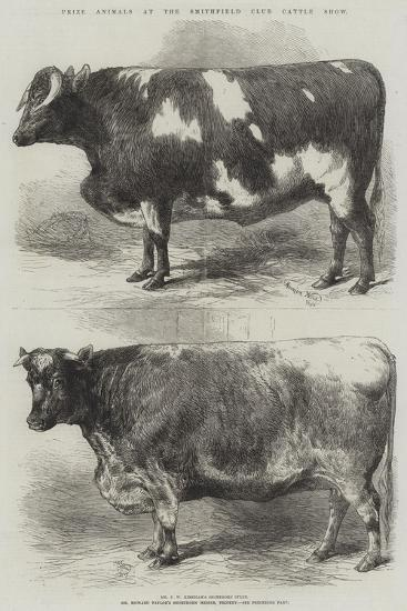 Prize Animals at the Smithfield Club Cattle Show-Harrison William Weir-Giclee Print
