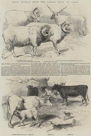 Prize Animals from the Cattle Show, at Paris--Giclee Print