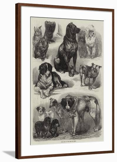 Prize Dogs at the Paris Dog Show-Auguste Andre Lancon-Framed Giclee Print