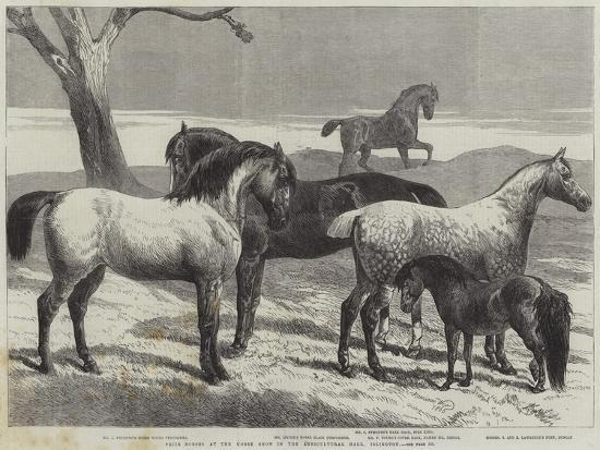 Prize Horses at the Horse Show in the Agricultural Hall, Islington-Harrison William Weir-Giclee Print