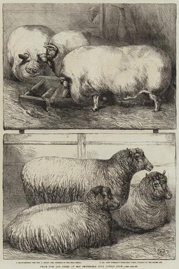 Prize Pigs and Sheep at the Smithfield Club Cattle Show-Harrison William Weir-Giclee Print