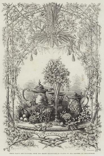 Prize Plate and Flowers, from the Grand Exhibition of Plants of All Nations, at Cheltenham--Giclee Print