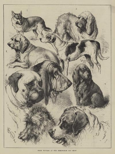 Prize Winners at the Birmingham Dog Show--Giclee Print