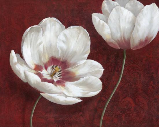Prized Blooms I-Nan-Art Print
