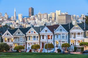 The Painted Ladies of San Francisco by prochasson