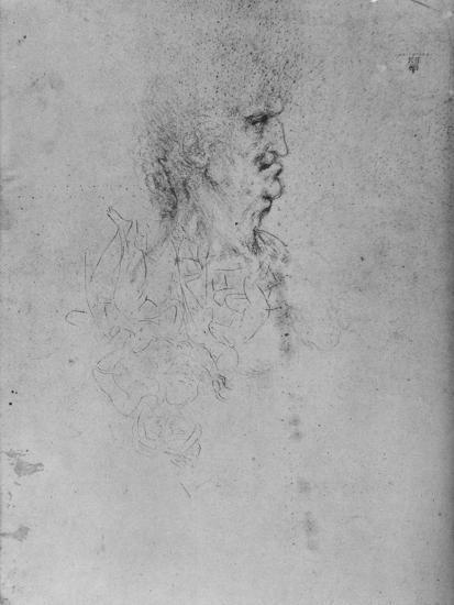 'Profile to the Right of an Old Man', c1480 (1945)-Leonardo da Vinci-Giclee Print