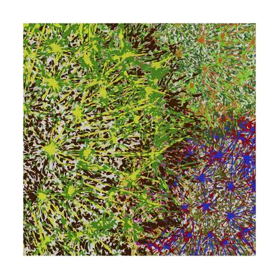 Profusion II-James Burghardt-Art Print
