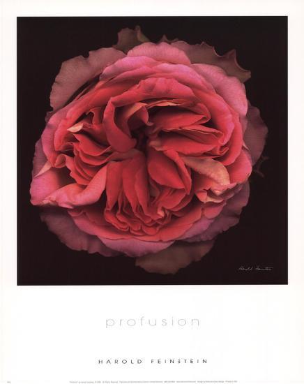 Profusion-Harold Feinstein-Art Print