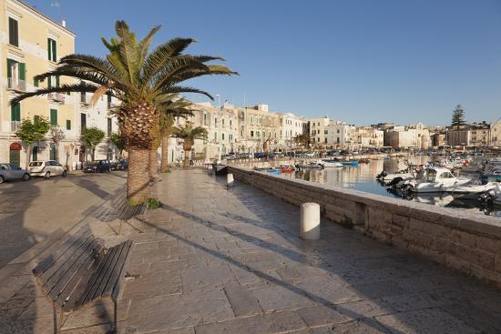 Promenade at the Harbour, Old Town, Trani, Le Murge, Barletta-Andria-Trani District-Markus Lange-Photographic Print